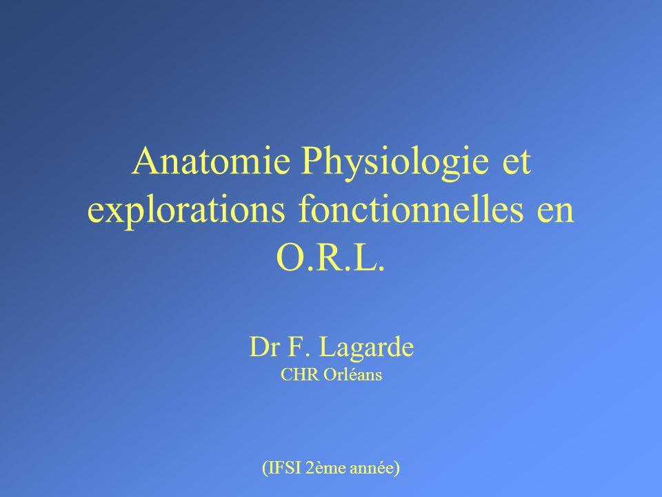 Anatomie Physiologie et explorations fonctionnelles en O.R.L .PDF
