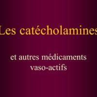 Les catécholamines .PDF