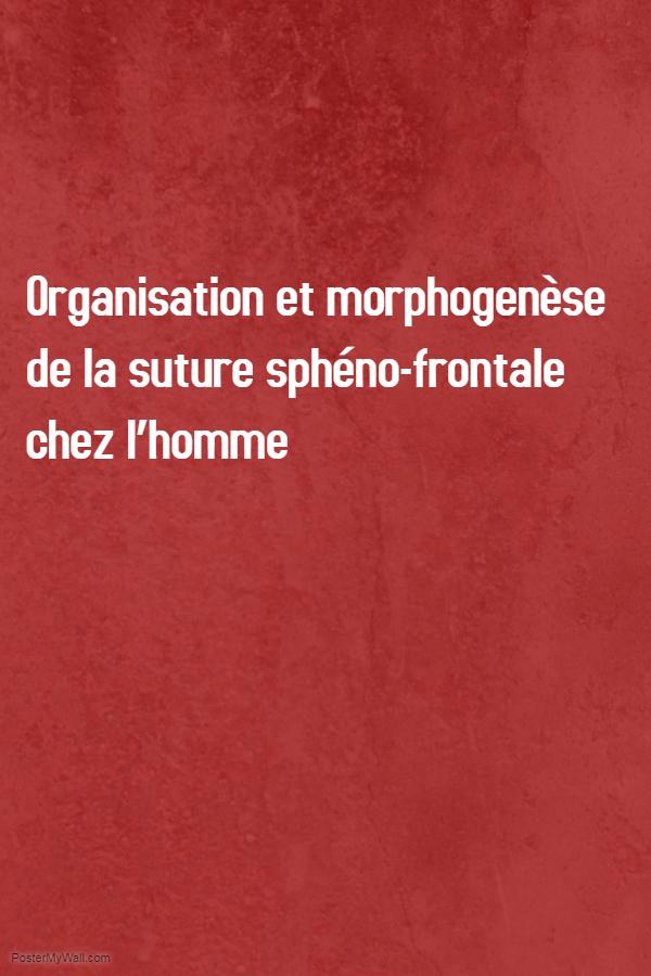 Organisation et morphogenèse de la suture sphéno-frontale chez l'homme .PDF