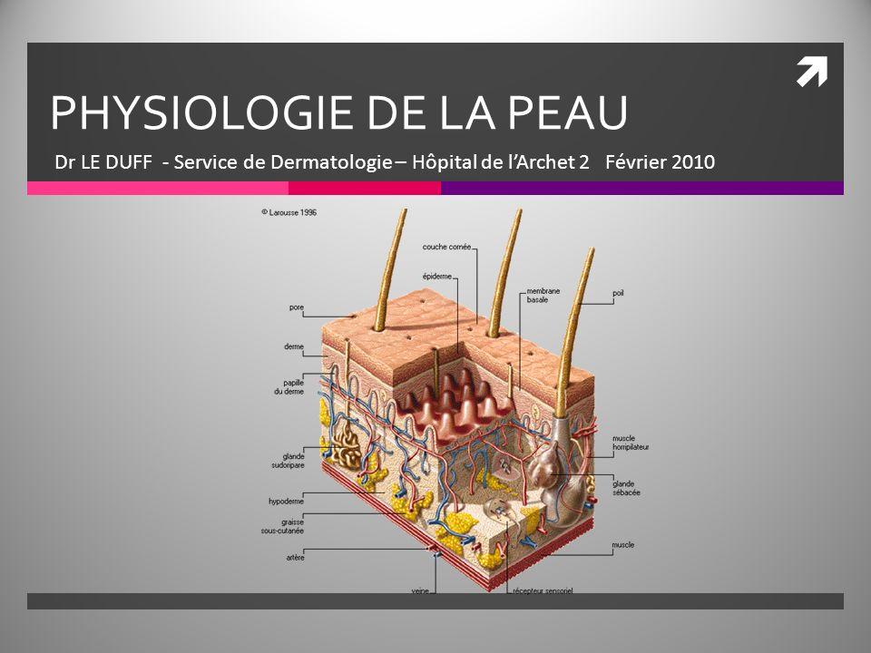 PHYSIOLOGIE DE LA PEAU .PDF