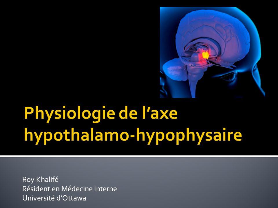 Physiologie de l'axe hypothalamo-hypophysaire