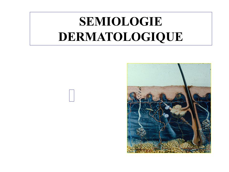 SEMIOLOGIE DERMATOLOGIQUE .PDF