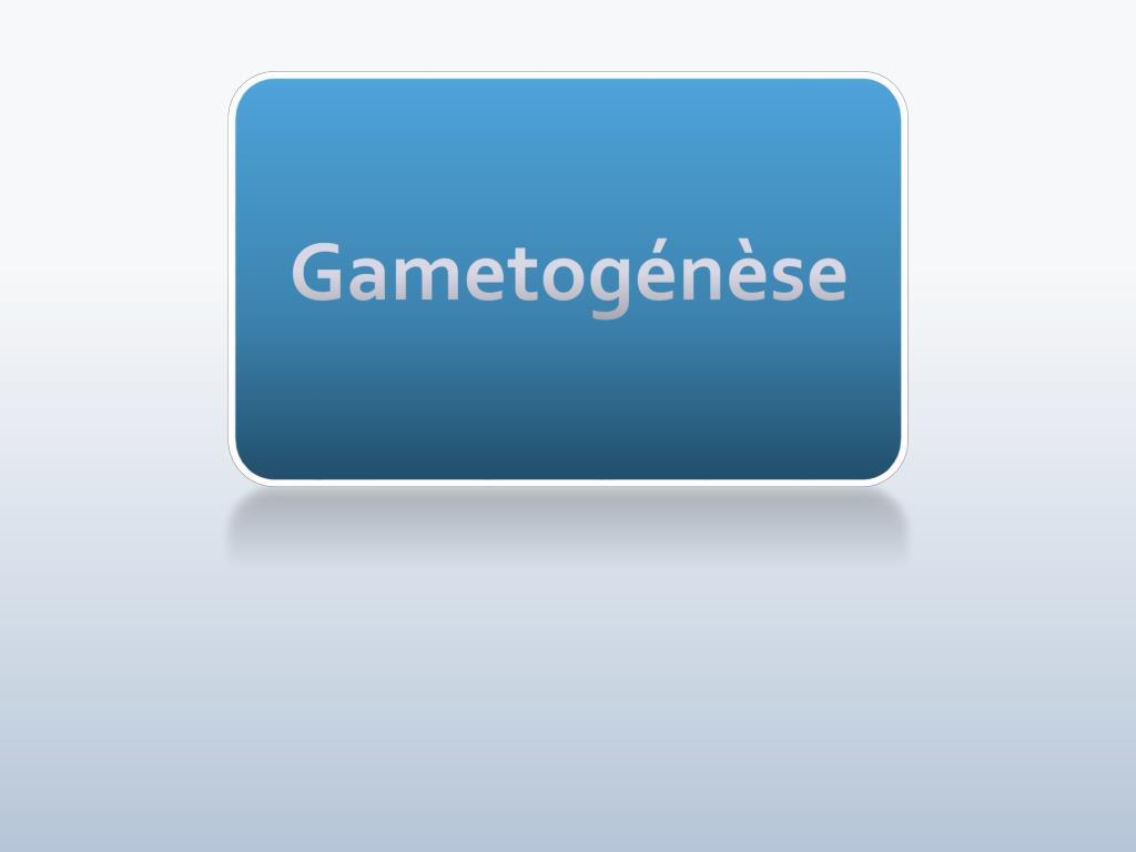 Gametogénèse .PDF