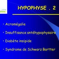 HYPOPHYSE .PDF