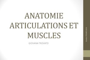 ANATOMIE ARTICULATIONS ET MUSCLES .PDF