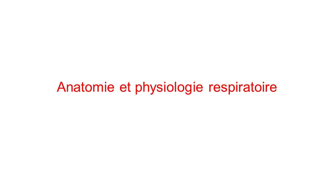 Anatomie et physiologie respiratoire .PDF