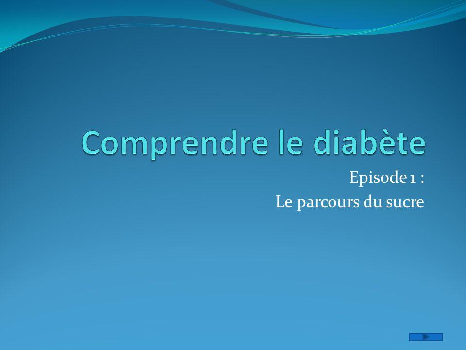 Comprendre le diabète .PDF