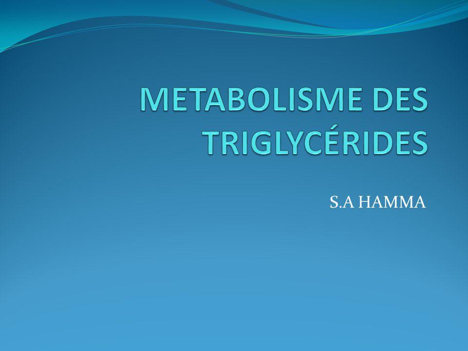 METABOLISME DES TRIGLYCÉRIDES .PDF
