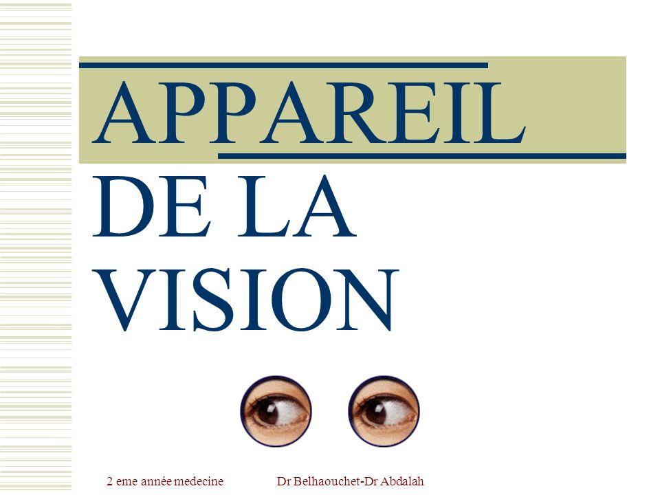 APPAREIL DE LA VISION.PDF