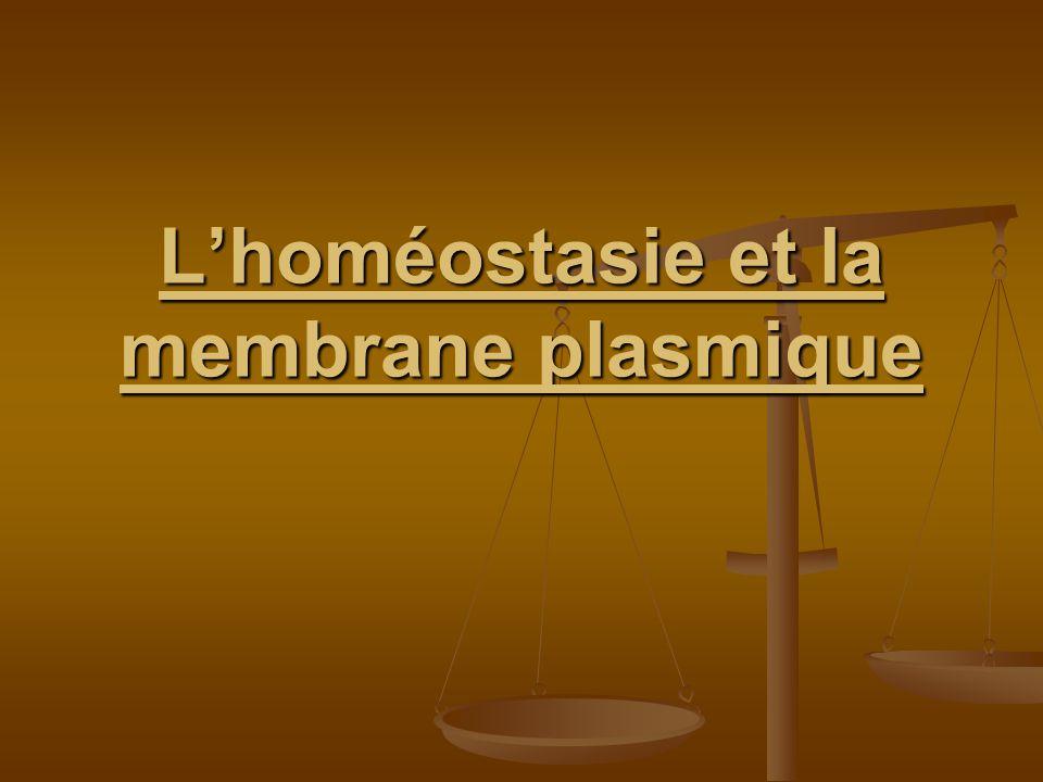 L'homéostasie et la membrane plasmique .PDF