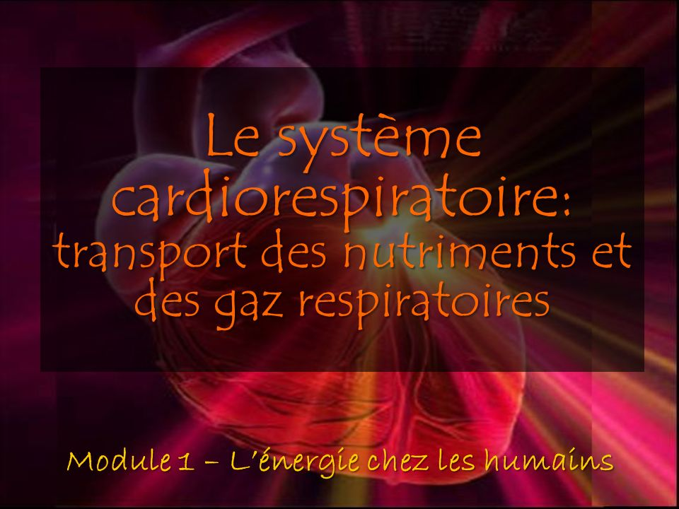 Le système cardiorespiratoire: transport des nutriments et des gaz respiratoires .PDF