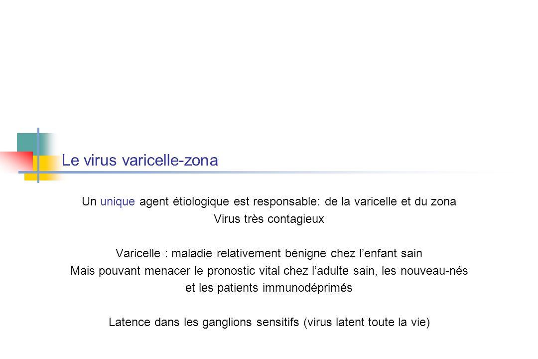 Le virus varicelle-zona .PDF