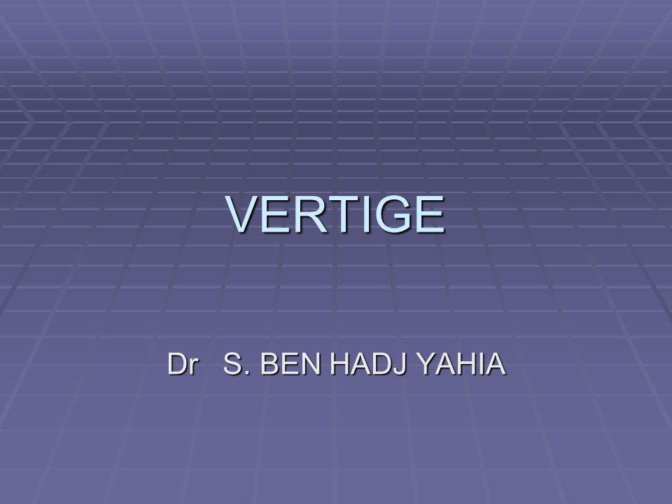VERTIGE .PDF