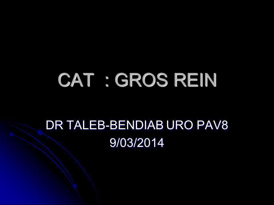 CAT : GROS REIN .PDF