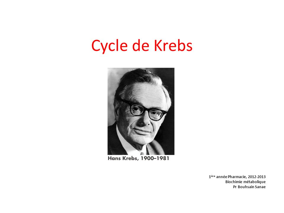 Cycle de Krebs .PDF