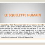 LE SQUELETTE HUMAIN .PDF