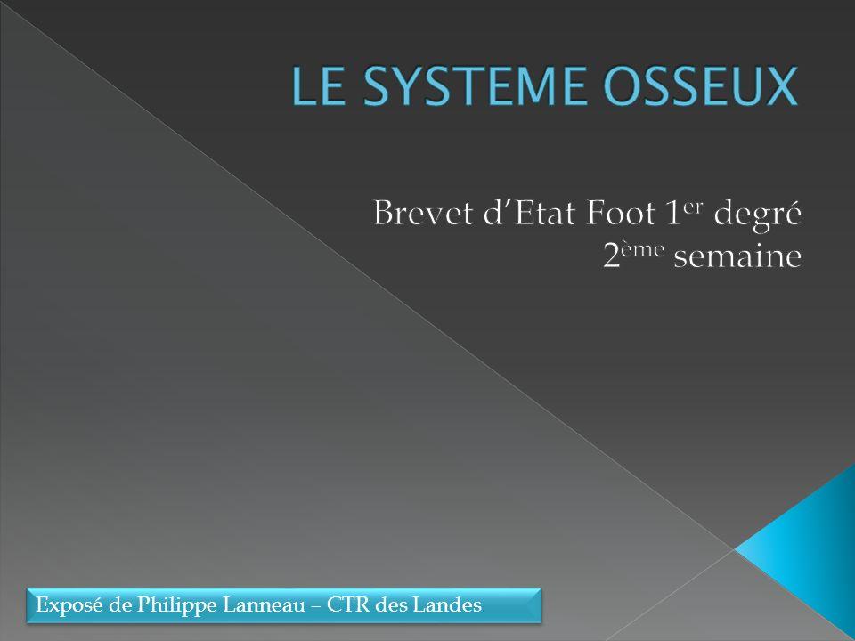 LE SYSTÈME OSSEUX .PDF