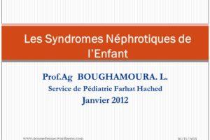 Les Syndromes Néphrotiques de l'Enfant .PDF