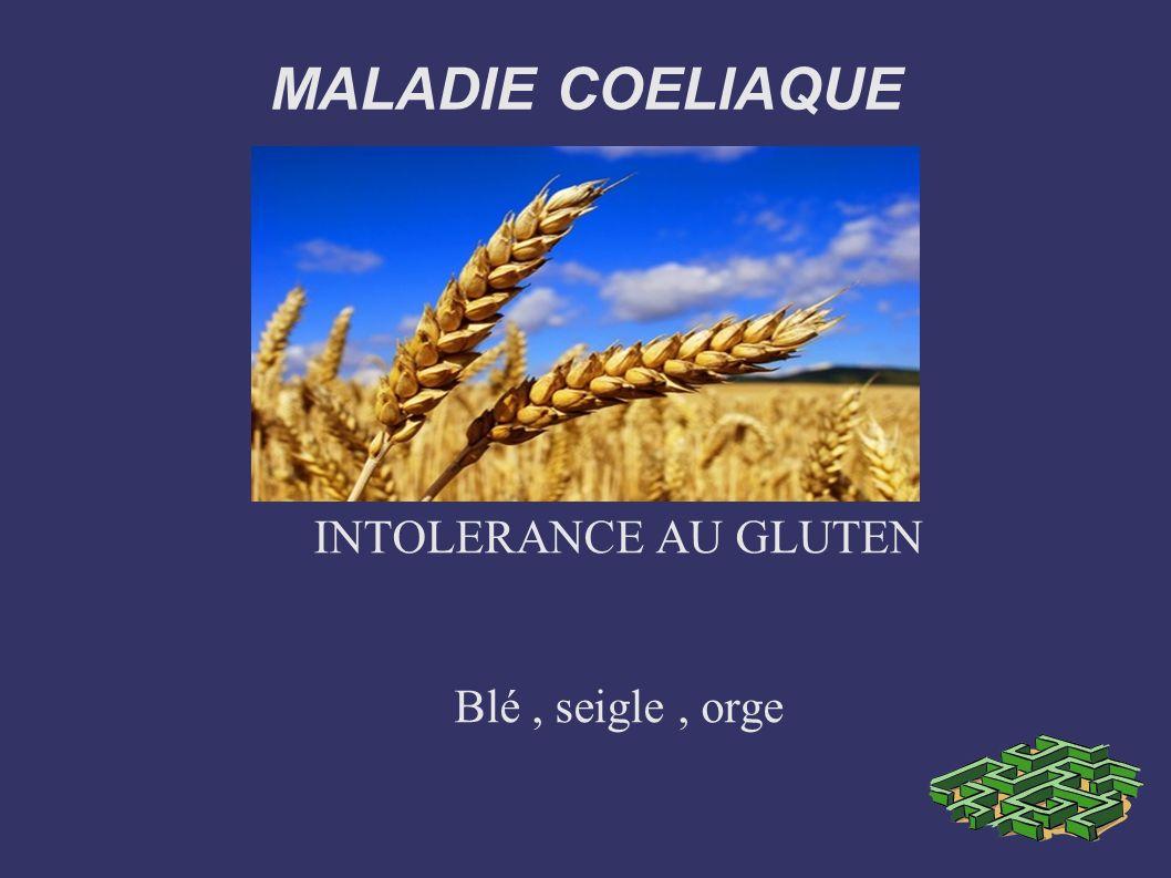 MALADIE COELIAQUE .PDF