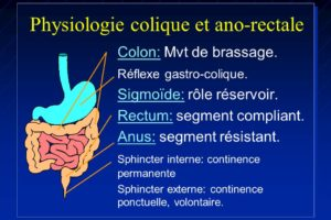 Physiologie colique et ano-rectale .PDF