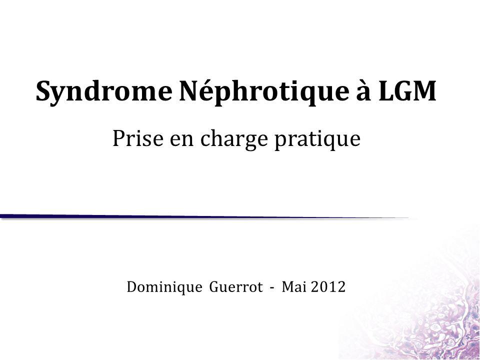 Syndrome Néphrotique à LGM .PDF