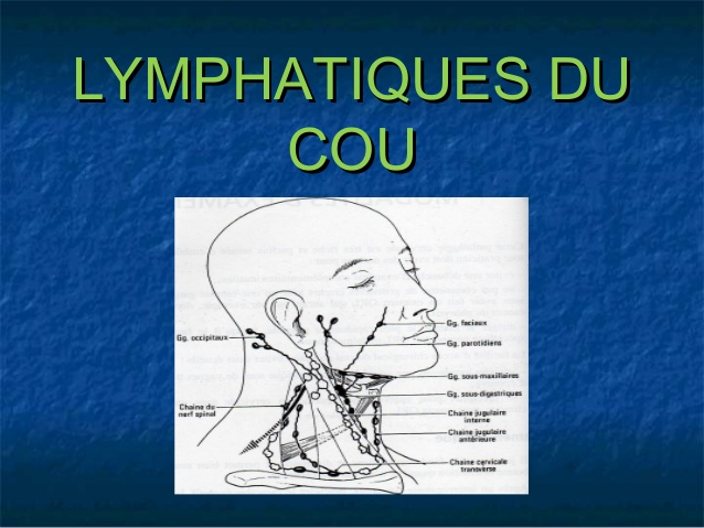 Lymphatique du cou .PDF