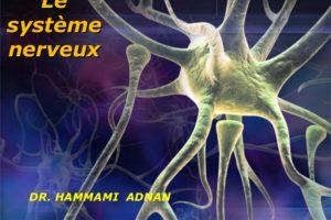 Le système nerveux .PDF