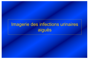 Imagerie des infections urinaires aiguës .PDF