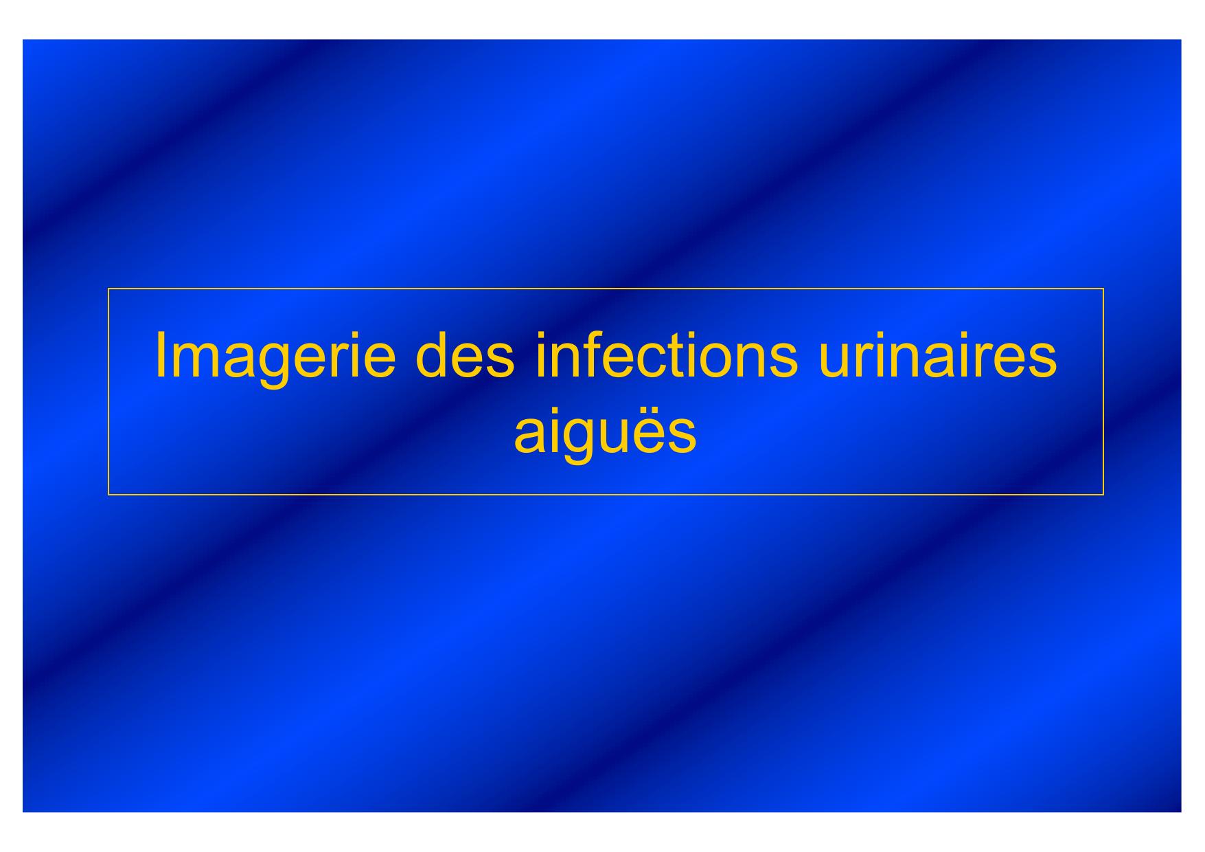Imagerie des infections urinaires aiguës .PDF
