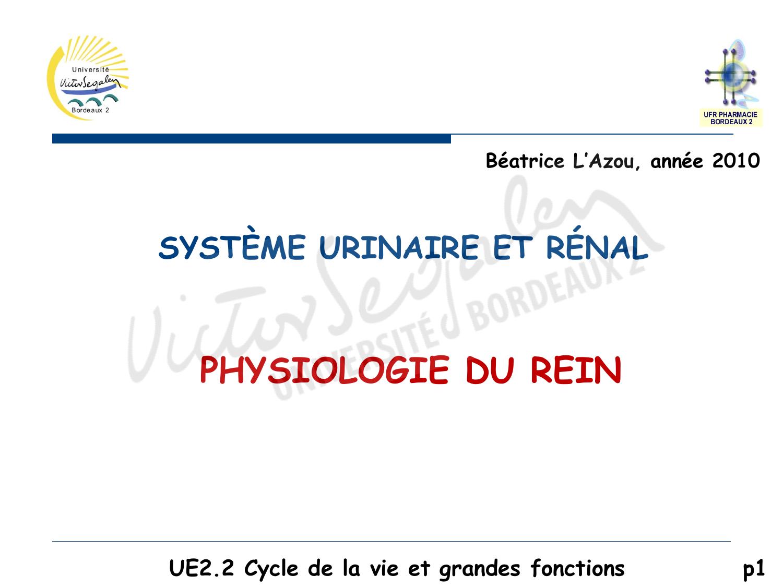 SYSTÈME URINAIRE ET RÉNAL PHYSIOLOGIE DU REIN .PDF