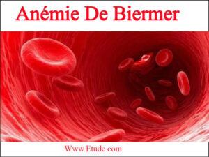 Anémie de biermer pdf